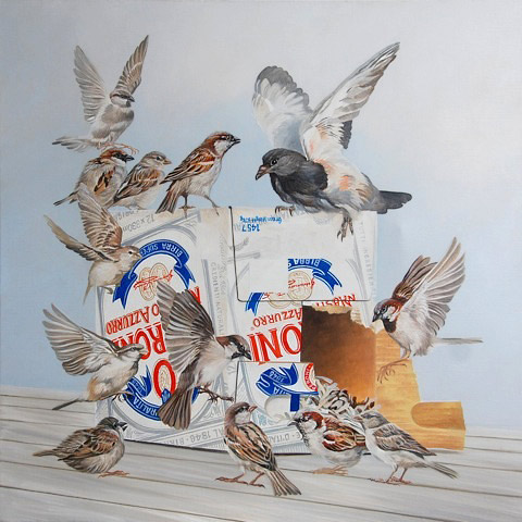 Craig Platt nz bird artist, oil on canvas