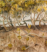 derek march nz landscape artist