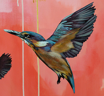 Kirsty Nixon NZ landscape art, new birds paintings, Kingfisher